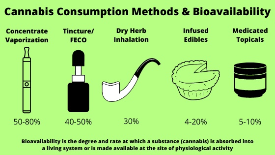 Cannabis Consumption Methods and Bioavailability — Greenway Magazine